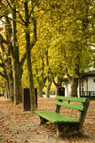 Bench in a park during autumn season Royalty Free Stock Photo