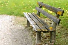 Bench in the park during Autumn season Stock Photos