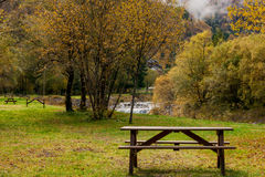 The bench in park in autumn Royalty Free Stock Photo