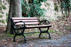 Bench in the park. A long seat for several people, typically made of wood or stone Stock Image