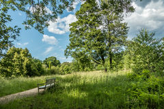 Bench in the park. In Berlin Royalty Free Stock Photo