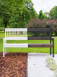 Bench in the park. Stock Photos