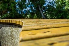 Bench in a park close-up Stock Photos
