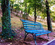A bench in park Stock Images