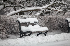 Bench at park covered in snow Royalty Free Stock Photos