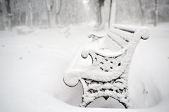 Bench in the  park covered with snow in winter Royalty Free Stock Photo