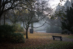 Bench in the park. Empty bench in Sefton Park during evening Royalty Free Stock Photo