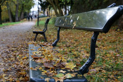 A bench in a park Stock Image