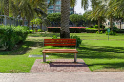 Bench in the park. A free bench in the park on a sunny day Stock Photos