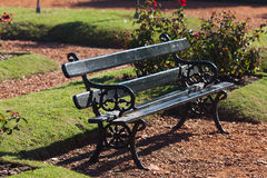 Bench in the park on the grass background Royalty Free Stock Image