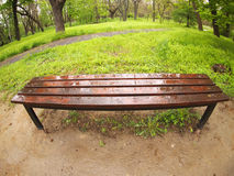 Bench in the park just after a spring rain Stock Photography