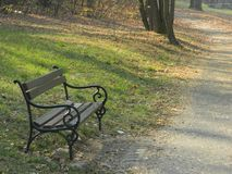 Bench in the park near forest royalty free stock photos