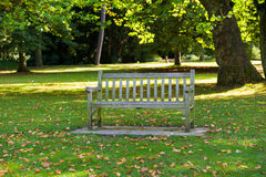 Bench in a park Stock Images