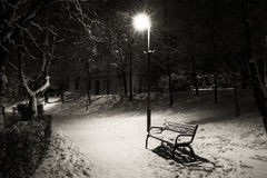 Bench in the park. One bench in the park in winter night Royalty Free Stock Image