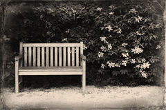 Bench in the park. Retro & Vintage Postcard. Bench in the park. Remember the good old times. Damaged photography. Retro & Vintage postcards stock photos