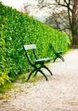 bench in park on road with green bushes Stock Photo