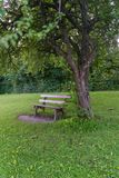 Bench in park. Romantic bench in peaceful park Royalty Free Stock Image