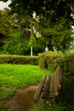 A bench in a park Royalty Free Stock Photo