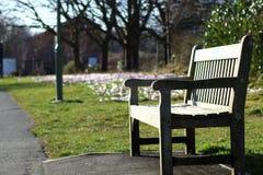Bench Royalty Free Stock Photo