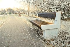 Bench in the Park snake in the snow under the sun. royalty free stock photos