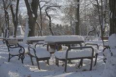 Bench in the park with snow Stock Photo