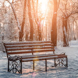 Bench in the park in the snow Royalty Free Stock Image