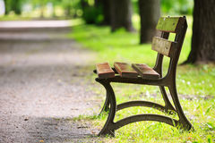 Bench in the park. In spring Royalty Free Stock Images