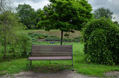Bench in the park in summer Stock Images