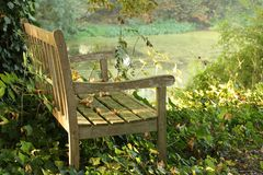 Bench in a park on a sunny day stock photography