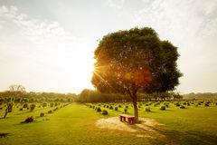 Bench in the park at sunset. India Stock Images