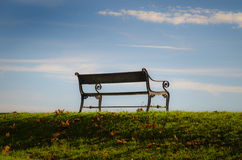 Bench. In a park towards blue sky stock image