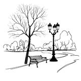 Bench in park with tree and street latern. City park landscape. Royalty Free Stock Photo