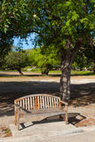 Bench in the park. Royalty Free Stock Photography