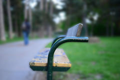 Bench in park. Waiting for someone Stock Photography