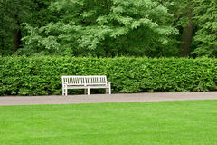 Bench in the park. White bench against a hedge in the park Royalty Free Stock Image