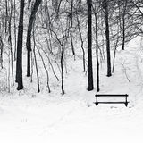 Bench in park in winter Stock Image