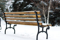 Bench in the park in winter. Royalty Free Stock Photo