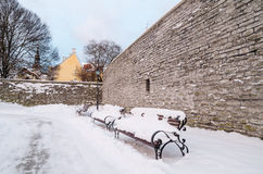 Bench  in the park winter Old Tallinn Royalty Free Stock Photos