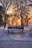 Bench in a park in winter sunset landscape Royalty Free Stock Photos