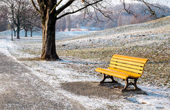 Bench in park in winter Royalty Free Stock Photography