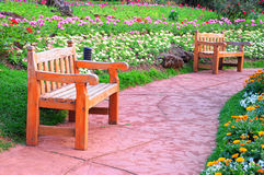 Bench in the park. Wooden bench in Doi Ang-Khang, 80th garden park in Chaing Mai, Thailand Royalty Free Stock Photo