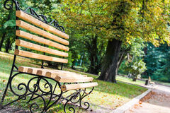 The bench in the park Royalty Free Stock Images