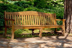 bench parken Royaltyfri Foto