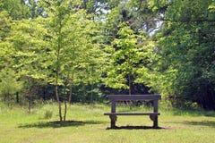 bench parken Arkivbild