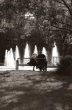 bench parken Arkivbilder