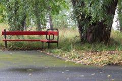 bench parkred Landskapbörjan av hösten Royaltyfri Bild