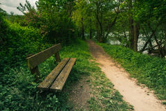 Bench and path in a green park Royalty Free Stock Photo