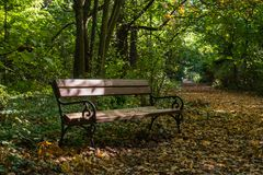 Bench and pathway Stock Photography