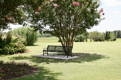 Bench in a Peaceful Garden. A bench sits empty in a peaceful, serene and quiet garden of flowers Stock Photography