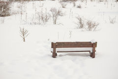 Bench in a picnic field covered with Royalty Free Stock Images